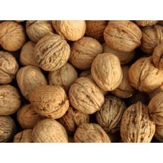 Купувам Орехи с черупка