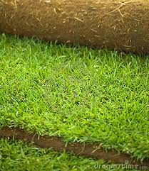 Купувам Производство на тревен чим