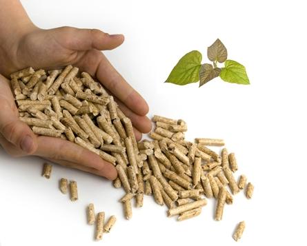 Купувам Биомаса, биоматериал