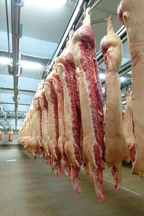 Купувам Свинско месо на едро