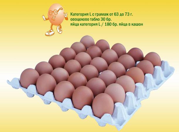 Купувам Яйца категория L овоцелово табло