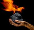 Купувам Въглища