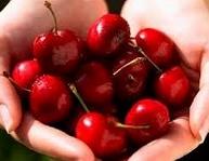 Купувам Череши пресни плодове