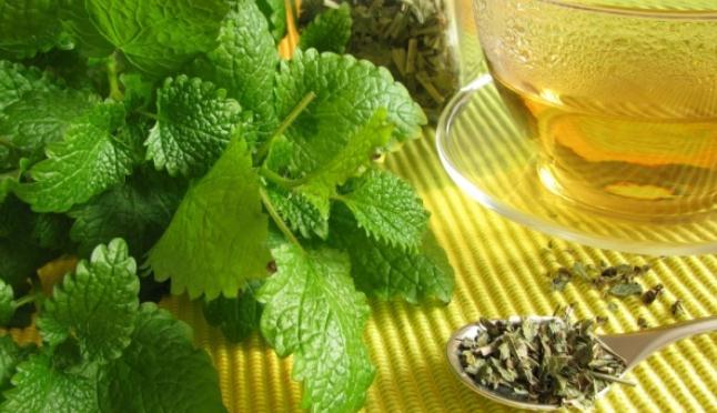 Buy Herbal pickings