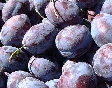 Купувам Сливи , пресни плодове