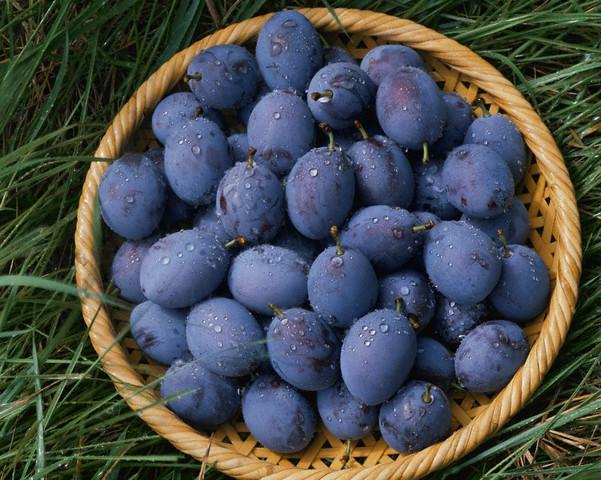 Купувам Плодове - сини сливи за консумиране