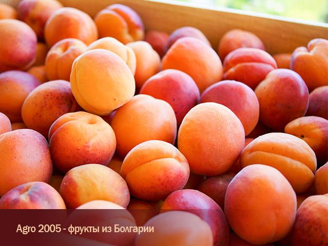 Купувам Абрикос Болгария с доставкой в РФ и другие страны