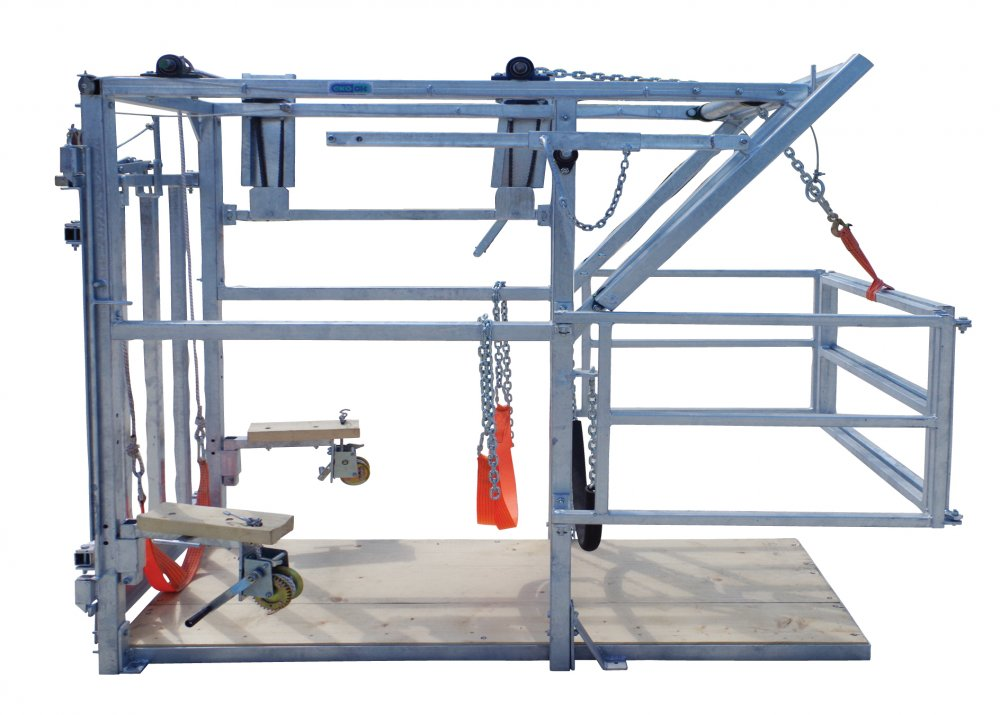 Buy Veterinary stand for cattle