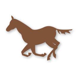 Купувам Пълноценен фураж за коне