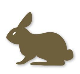 Купувам Пълноценен фураж за подрастващи зайци до 12 седмици