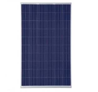Купувам 240Wp соларен панел за 24Vdc системи Jinko Solar