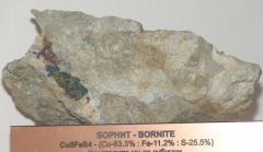 Руда, Борнит