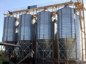 Siloses for the grain