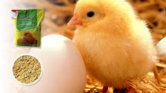 Пълноценен комбиниран фураж за пилета яйценосни от
