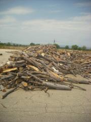 Дървен материал, бук, нарязан, насипно