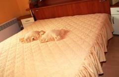 Покривала, кувертюри за легло