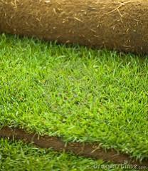 Производство на тревен чим
