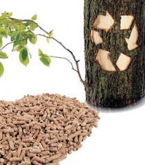 Пелети от иглолистна дървесина