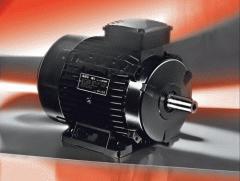 Електродвигател  IE1