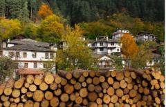 Дърва, сухи, за огрев