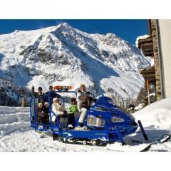 Моторна шейна SHERPA Trans-Alp BUS
