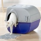 Toilets for Pets