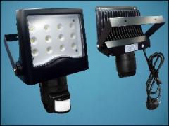 LED LX-LD-102P118B-12 12-LED 21W 220V WHITE+PIR