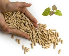 Органична материя с растителен или животински
