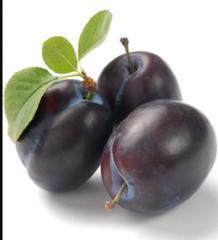 Сливи, плодове, сини сливи