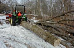 Roundwood timber
