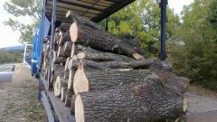 Firewood form Oak