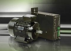 Electric synchronous motors