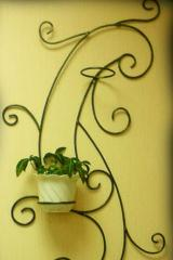 Flower containers for home