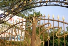 Gates for houses and summer cottages with design