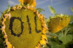 Слънчогледово олио