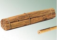 Бамбукови колове