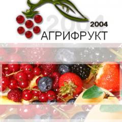 Fresh-frozen berries
