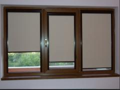 Two-chamber plastic windows