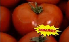 Тераует за отглеждане на домати