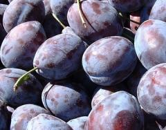 Сливи , пресни плодове