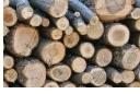 Дърва, дървесина
