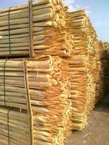 Дървени колове за лозя