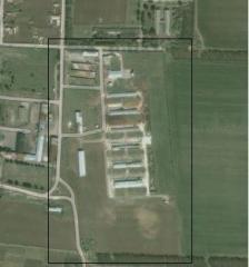 Животновъдна ферма, Молочная ферма