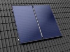Plants solar water-heating