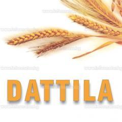 Производство и търговия на билки, диабетични, диетични и целебни храни.