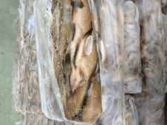 Замразена Морска кая  13+ цена 1,10 €/ кг