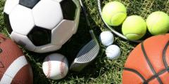 Equipment for sports and sanitary facilities
