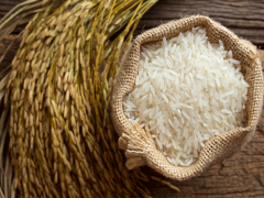 Polished rice