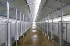 Equipment for rearing of young animals