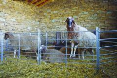 Модулна преграда за овце - 2,75м/1,00м